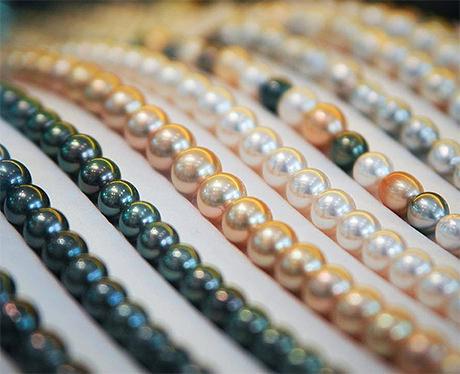 品質の良い真珠を買い付けています